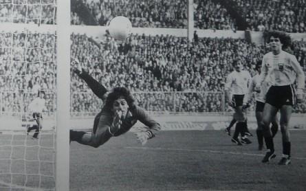 Argentina_1980_GK_LeCoqSportif_Friendly_ML_1_UbaldoMatildoFillol_jugador_01